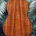 阿浪老師烏克麗麗-來自夏威夷.全世界最美麗的手工琴…_005.jpg