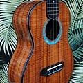 阿浪老師烏克麗麗-來自夏威夷.全世界最美麗的手工琴…_006.jpg
