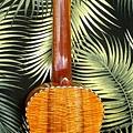 阿浪老師烏克麗麗-來自夏威夷.全世界最美麗的手工琴…_010.jpg