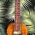 阿浪老師烏克麗麗-來自夏威夷.全世界最美麗的手工琴…_009.jpg