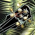 阿浪老師烏克麗麗-來自夏威夷.全世界最美麗的手工琴…_012.jpg