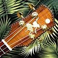 阿浪老師烏克麗麗-來自夏威夷.全世界最美麗的手工琴…_011.jpg