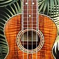 阿浪老師烏克麗麗-來自夏威夷.全世界最美麗的手工琴…_015.jpg