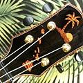 阿浪老師烏克麗麗-來自夏威夷.全世界最美麗的手工琴…_018.jpg