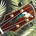阿浪老師烏克麗麗-來自夏威夷.全世界最美麗的手工琴…_016.jpg