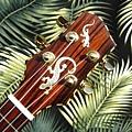 阿浪老師烏克麗麗-來自夏威夷.全世界最美麗的手工琴…_020.jpg
