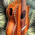 阿浪老師烏克麗麗-來自夏威夷.全世界最美麗的手工琴…_019.jpg