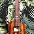 阿浪老師烏克麗麗-來自夏威夷.全世界最美麗的手工琴…_021.jpg