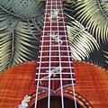 阿浪老師烏克麗麗-來自夏威夷.全世界最美麗的手工琴…_024.jpg