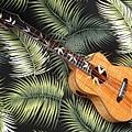 阿浪老師烏克麗麗-來自夏威夷.全世界最美麗的手工琴…_025.jpg