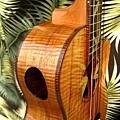 阿浪老師烏克麗麗-來自夏威夷.全世界最美麗的手工琴…_027.jpg