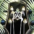 阿浪老師烏克麗麗-來自夏威夷.全世界最美麗的手工琴…_029.jpg
