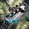 阿浪老師烏克麗麗-來自夏威夷.全世界最美麗的手工琴…_031.jpg