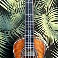 阿浪老師烏克麗麗-來自夏威夷.全世界最美麗的手工琴…_033.jpg