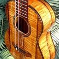 阿浪老師烏克麗麗-來自夏威夷.全世界最美麗的手工琴…_035.jpg