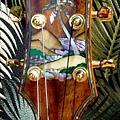 阿浪老師烏克麗麗-來自夏威夷.全世界最美麗的手工琴…_038.jpg
