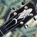 阿浪老師烏克麗麗-來自夏威夷.全世界最美麗的手工琴…_040.jpg