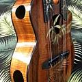 阿浪老師烏克麗麗-來自夏威夷.全世界最美麗的手工琴…_042.jpg