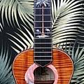 阿浪老師烏克麗麗-來自夏威夷.全世界最美麗的手工琴…_047.jpg