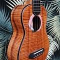 阿浪老師烏克麗麗-來自夏威夷.全世界最美麗的手工琴…_046.jpg