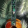 阿浪老師烏克麗麗-來自夏威夷.全世界最美麗的手工琴…_052.jpg