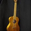 阿浪老師烏克麗麗ukulele專賣店-.jpg