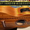 阿浪老師烏克麗麗ukulele專賣店-小海龜改裝.jpg