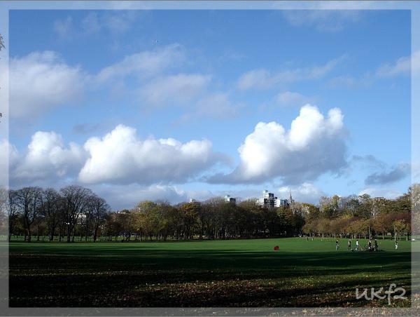 2009秋天的Meadow