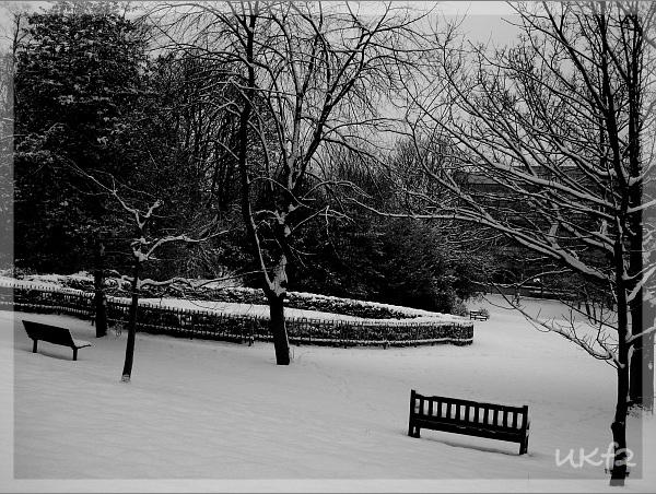 2010的大雪