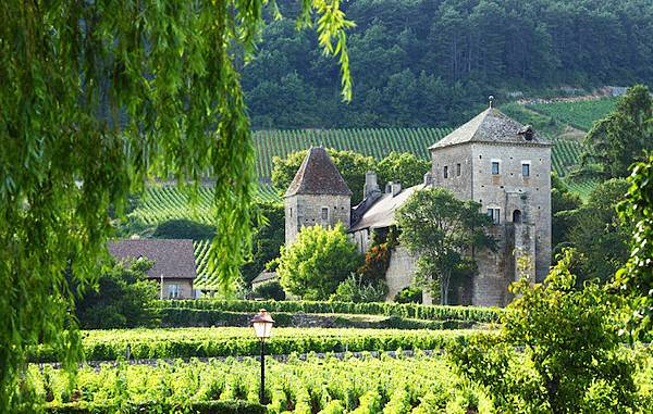visit-frances-wine-region-of-chablis-burgundy-feature
