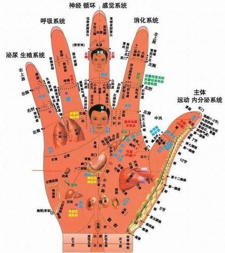 手掌穴圖2