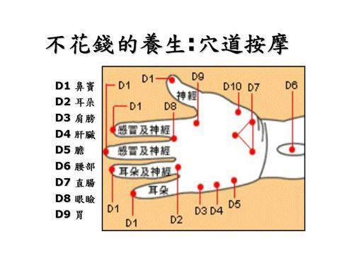 手掌穴圖4