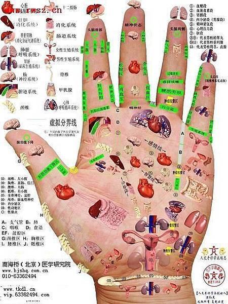 手掌穴圖1