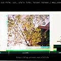 110film_ula_may2008_11.jpg