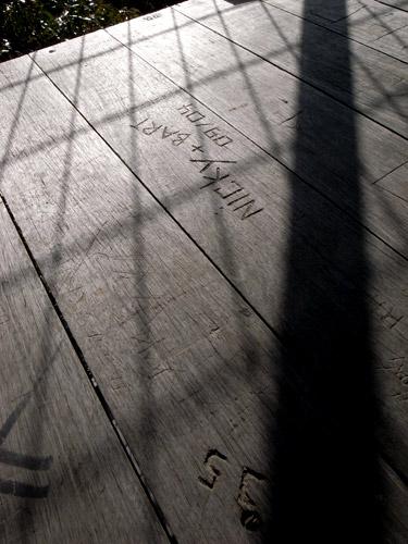 Bicentennial-Tree-10.JPG