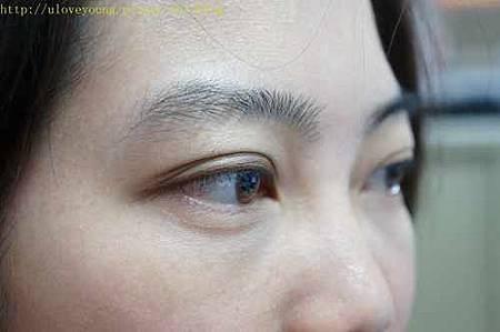 kate BK-1 雙色眼彩