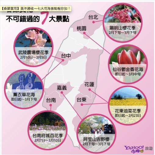 2013台灣櫻花季
