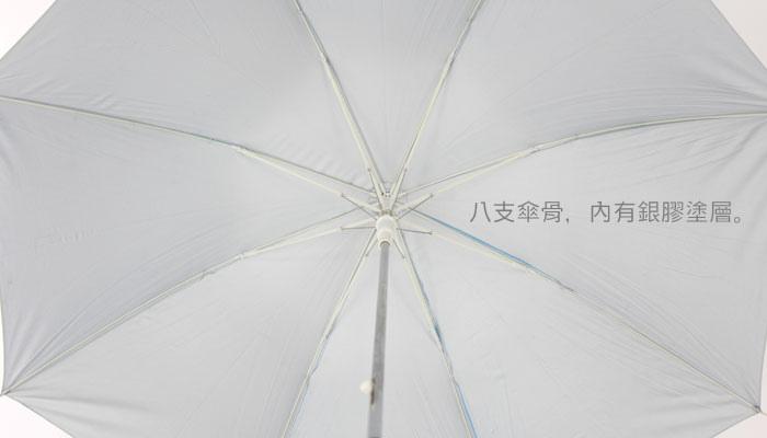 DSA-6.jpg