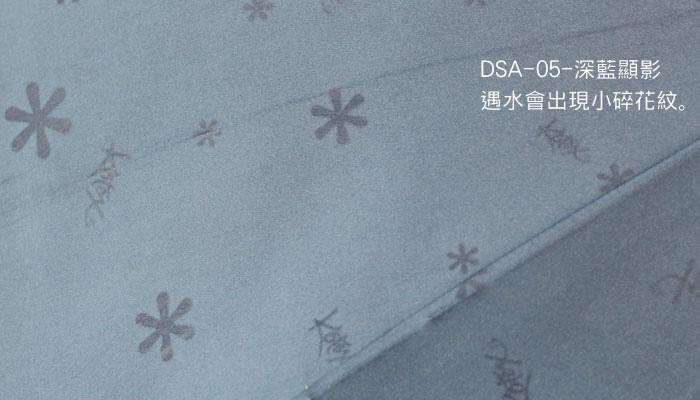 DSA-13.jpg