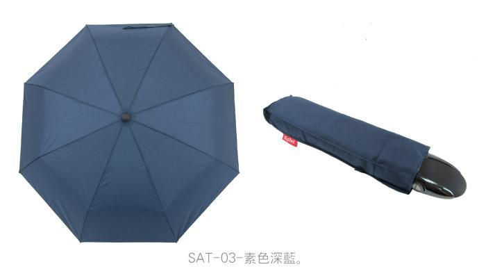 SAT-4.jpg