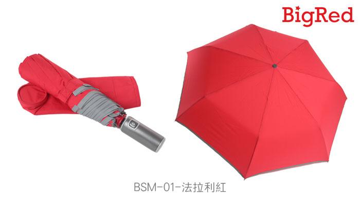 BSM-8.jpg