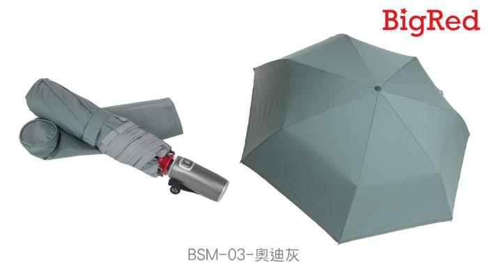 BSM-9.jpg