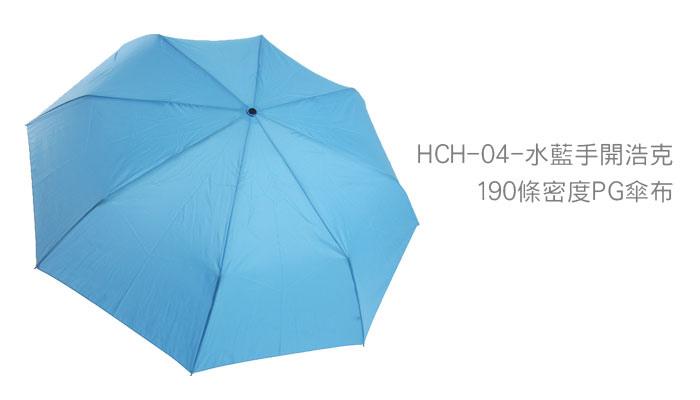 HCH-10.jpg