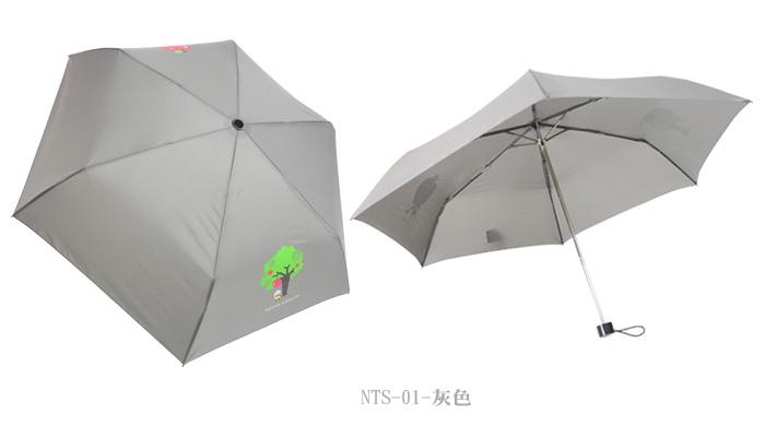NTS-6.jpg