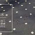 04_08.jpg