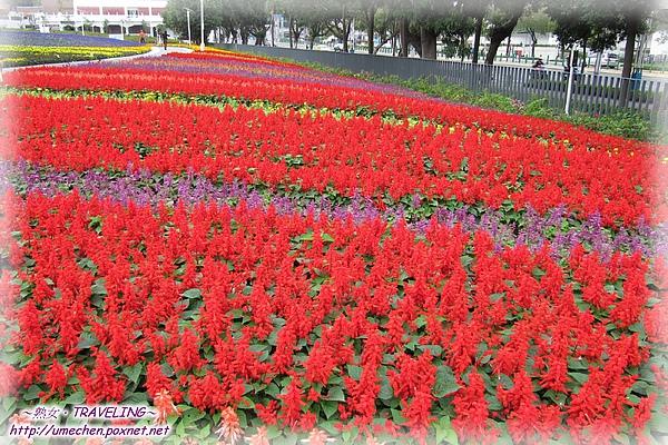 精緻花卉區.jpg