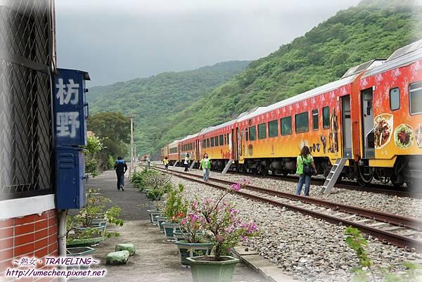 坊野站-只有郵輪列車在此停靠.jpg