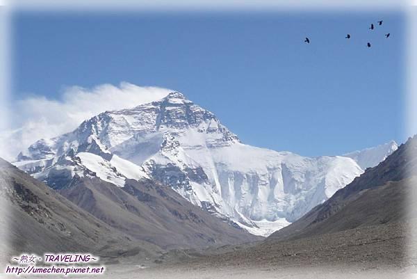 賓館2樓景觀台-群鳥飛過世界第一峰