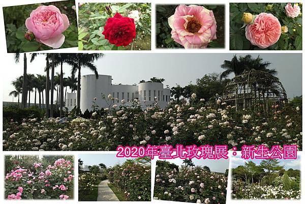 2020年臺北玫瑰展.jpg