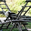 4b-臥龍熊貓-幼兒園-爬階梯2人組.jpg